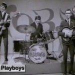Jungle Fever - The Playboys