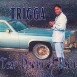 Welcome To My City - Trigga